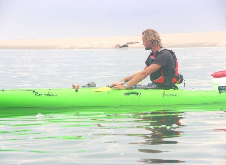 Backpacken in Nederland - kanoen zeehonden - Waddenhop