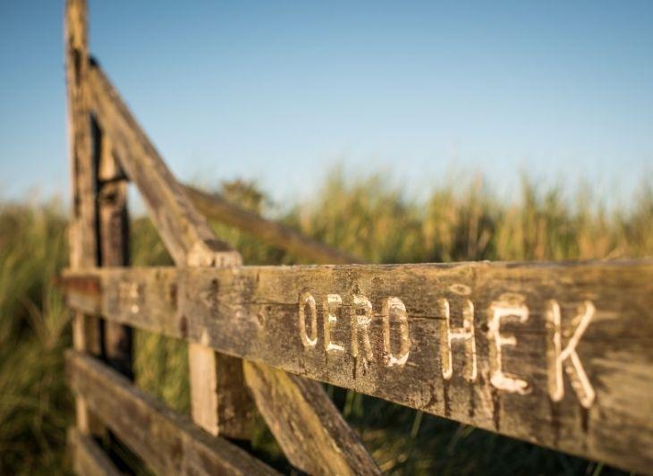 Vakantie Waddeneilanden - Ameland - Waddenhop