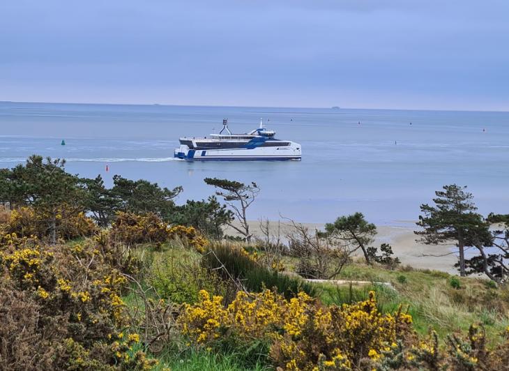 Singlereis Vlieland - Veerboot rederij Doeksen - Waddenhop